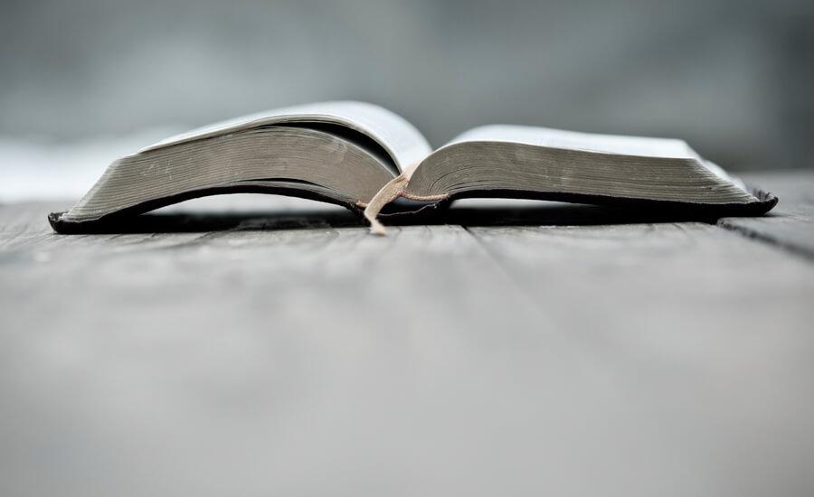 15 títulos para celebrar el Día Internacional del Libro | IESE Business School