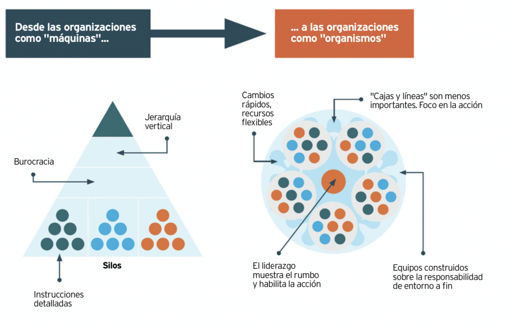 infografia agile organiaciones español