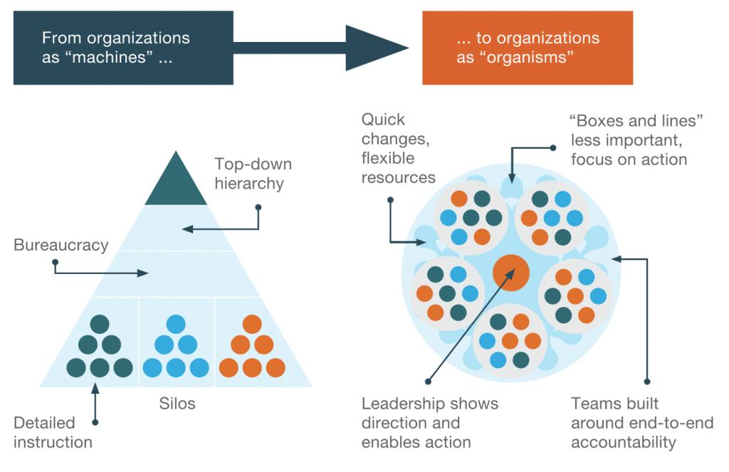 keys to adopt agile methodology