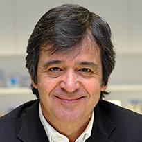 Luis Maroto