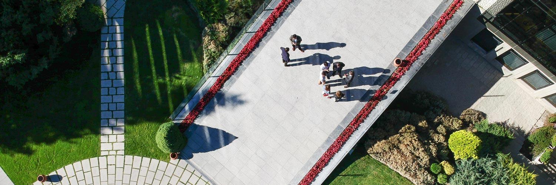 Can Organizational Purpose Improve Corporate Governance?